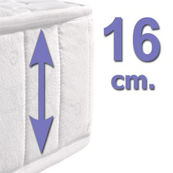 16 cm.