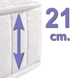 21 cm.