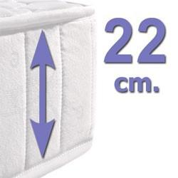22 cm.